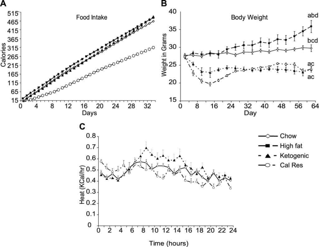 Ketogenic vs Chow diet