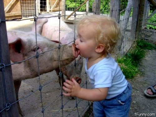 pig-kiss-blog